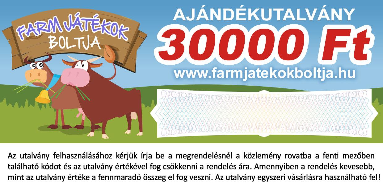 Ajándékutalvány 30000